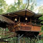 The Tree House Lodge - Costa Rica