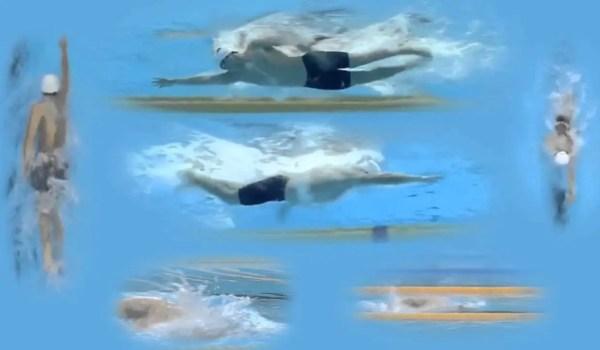 長距離選手が参考にしたいトップ選手の泳ぎとそのポイント