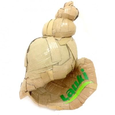 Lauki-Seashell