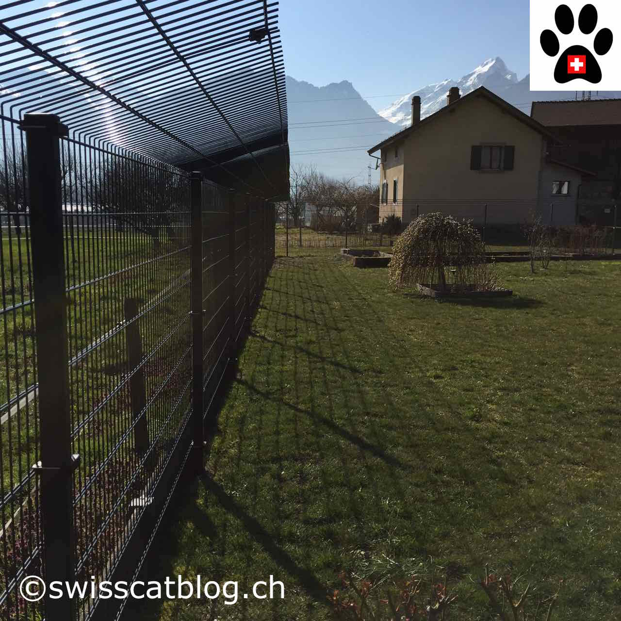 Come Recintare Un Giardino How To Enclose My Garden So That My Cats Can Safely Go Out