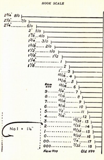 Fly Size Guide - Professional User Manual EBooks \u2022