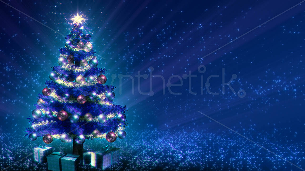 3d Animations Wallpapers Hd Growing Blue Christmas Tree Stock Video Footage Synthetick