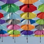 長くて暗い梅雨の時期を楽しもう! (1)