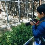 「動物とお話ができたらいいな~」次世代のワクワク動物園を考えてみました