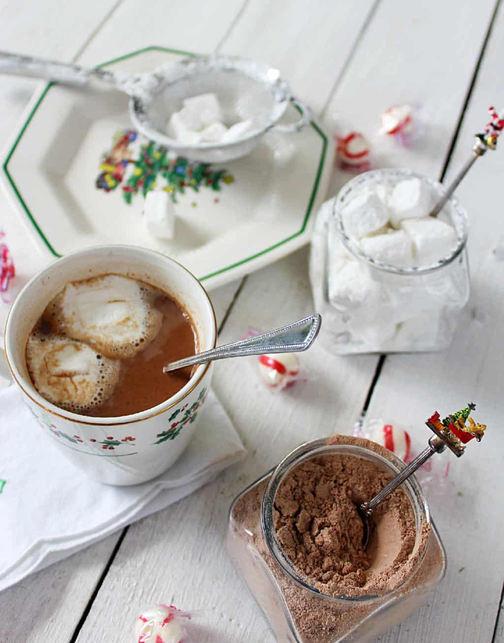 Homemade Hot Chocolate Mix With Powdered Creamer