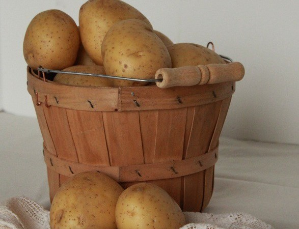 potatoes in basket 008 - Copy