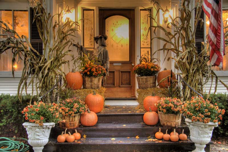 Halloween Decoration Ideas For Your Yard