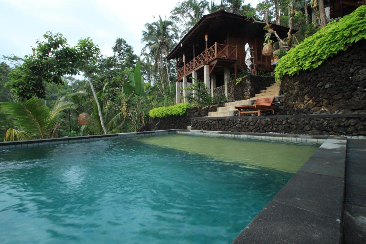 Pool Besser Rund Oder Eckig Dd Ubud Jungle Villa Indonesien Tegalalang Booking