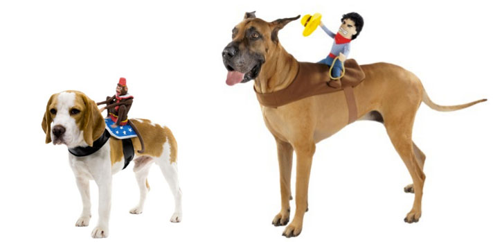 Dog Halloween Costumes: Our favorite funny outfits for