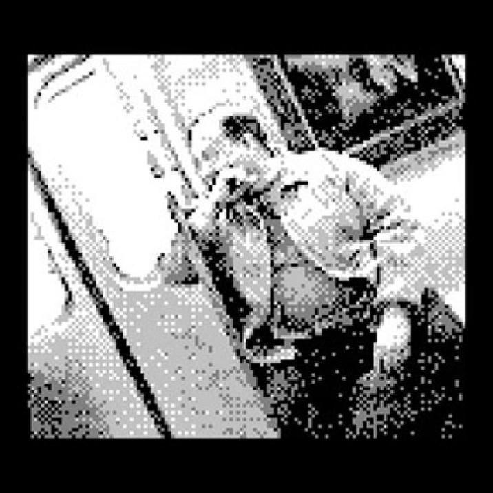 Gameboy_camera_Subwaychubby