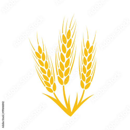 Agriculture wheat Logo Template Vector illustration Buy Photos - wheat template