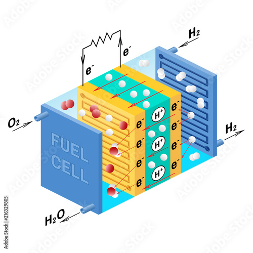 Fuel cell diagram Vector illustration Buy Photos AP Images