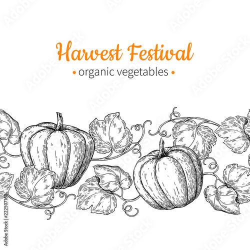 Pumpkin vector seamless pattern Hand drawn vintage border Harvest