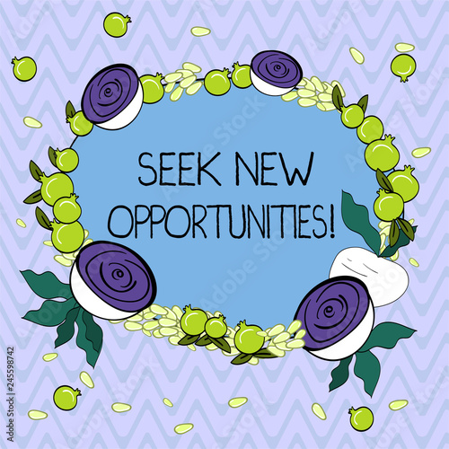 Word writing text Seek New Opportunities Business concept for