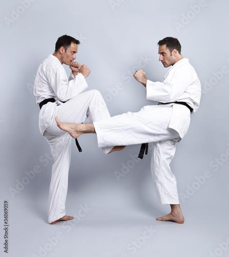 Karate vs Taekwondo, Partnertraining 07\
