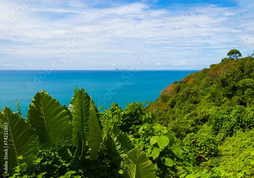 Serenity Shore Marine Scene\