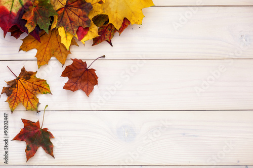 Fall White Pumpkins Wallpaper Quot Autumn Background With Colorful Leaves On Wooden