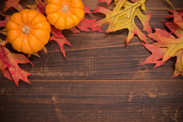 Pumpkins And Fall Leaves Wallpaper Search Photos By Michael Flippo