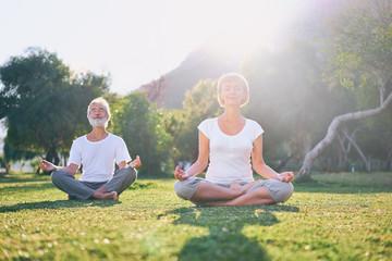 Photos Illustrations Et Videos De Zen
