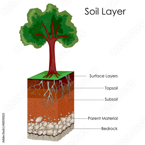 Education Chart of Science for Layers of Soil Diagram\