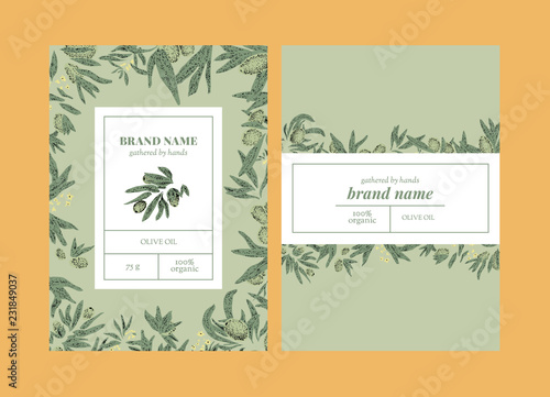 Vector set of package design with olive hand drawn elements