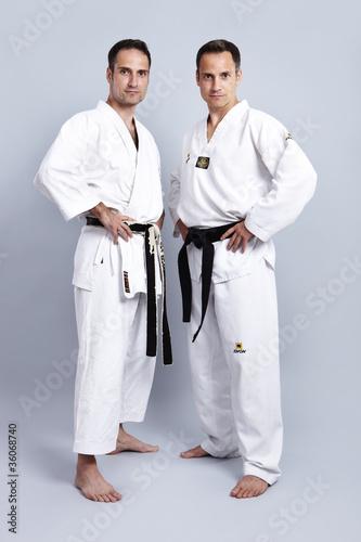 Karate vs Taekwondo, Gegenüberstellung 2\
