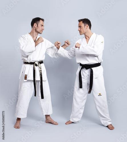 Karate vs Taekwondo, Grundhaltung\