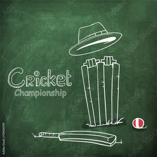 Cricket bat, ball, wicket stumps and umpire\u0027s hat on chalkboard