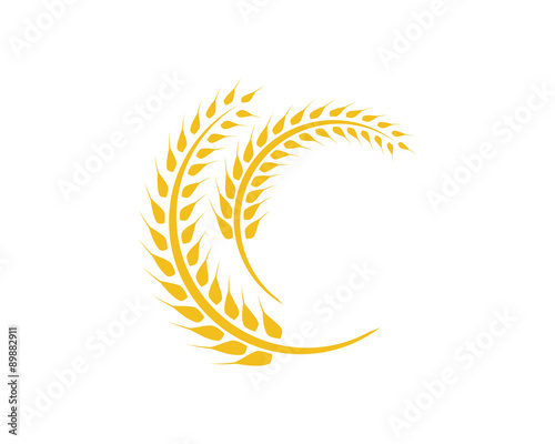 Wheat C Letter Logo Template\ - wheat template