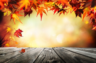 Vector Wallpaper Fall Colors Search Photos Red