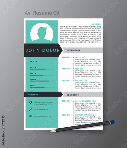 template cv informaticien