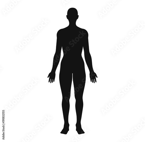 Anatomical Position Anterior View Female Body Silhouette Vector - anatomical position