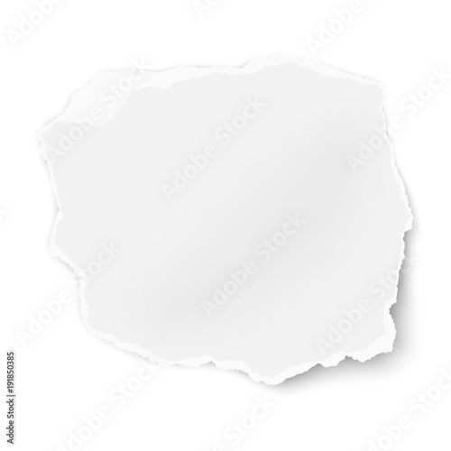 Vector ragged paper tear with soft shadow isolated on white