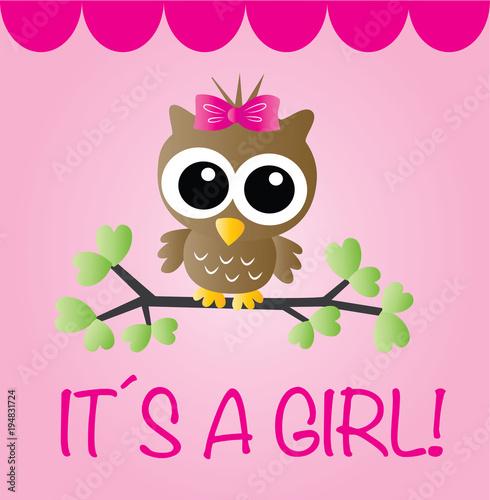 newborn baby girl announcement\