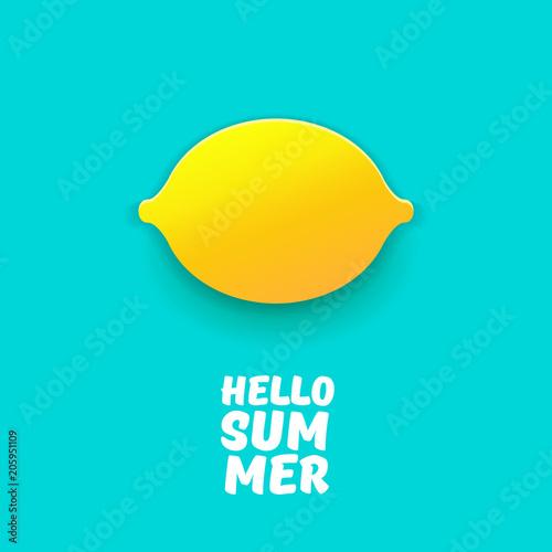 Vector Hello Summer Beach Party Flyer Design template with fresh
