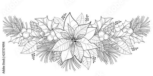 Vector contour Poinsettia garland or Christmas Star in black