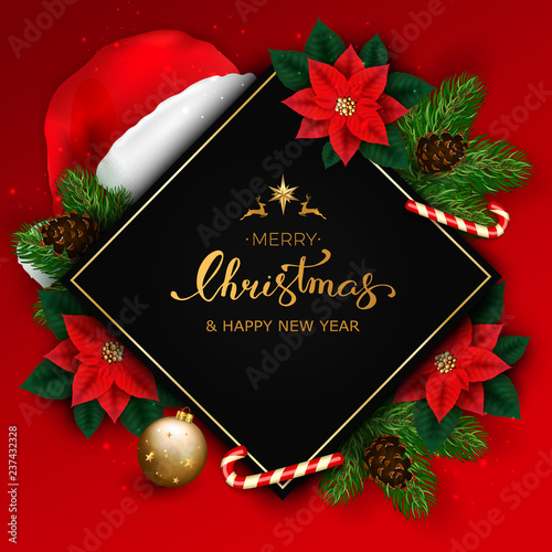 Merry Christmas banner with christmas tree branches and poinsettia