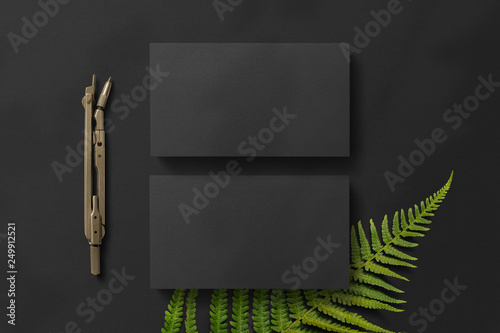 black business cards, a compass and a fern\