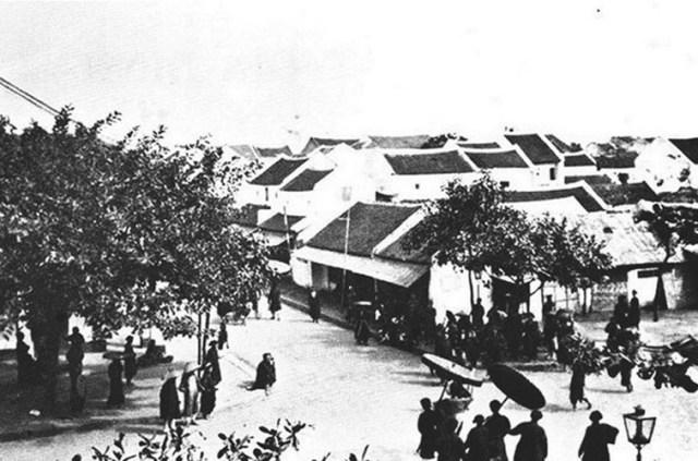 leuchong-113