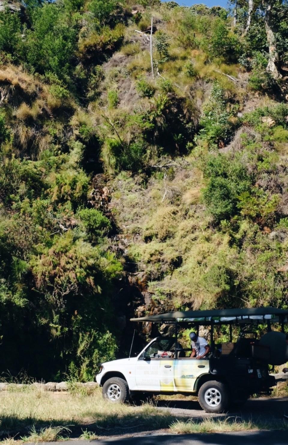 Table Mountain Wine Safari