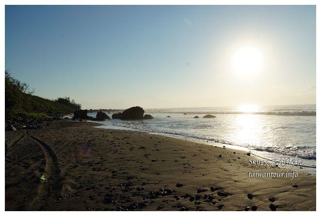 都歷木頭魚沙灘04596