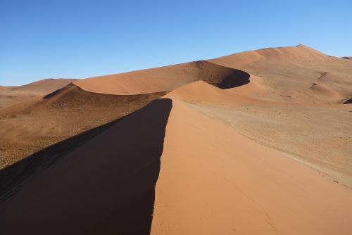 ナミビアナミブ砂漠2 (15)