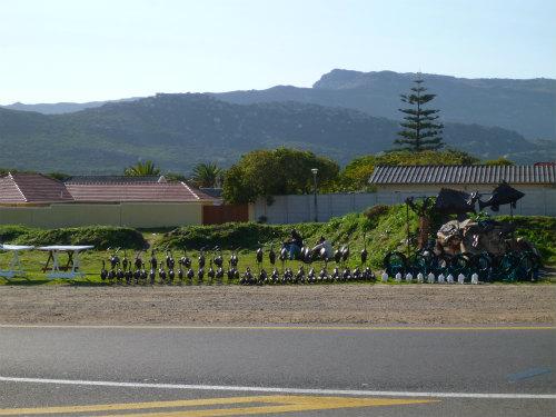 南アフリカ喜望峰 (26)