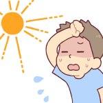熱中症とは、症状や原因と対策、スポーツドリンクより麦茶の方が良いの?