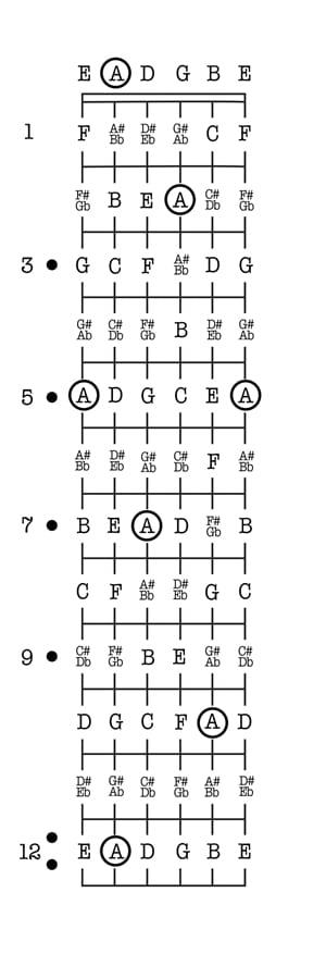 Intervals Bass Fretboard Diagram - DIY Enthusiasts Wiring Diagrams \u2022