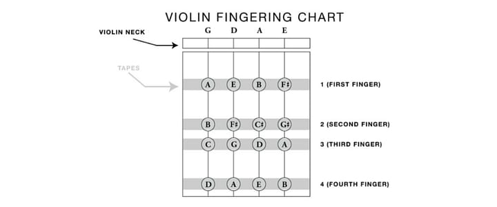 Violin String Notes  Finger Placement for Beginners Chart + Video