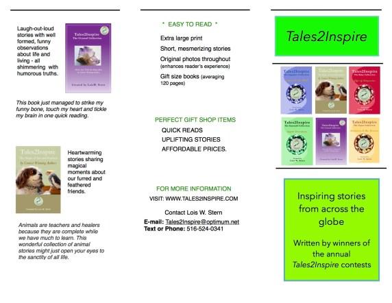 T2I Brochure side 1
