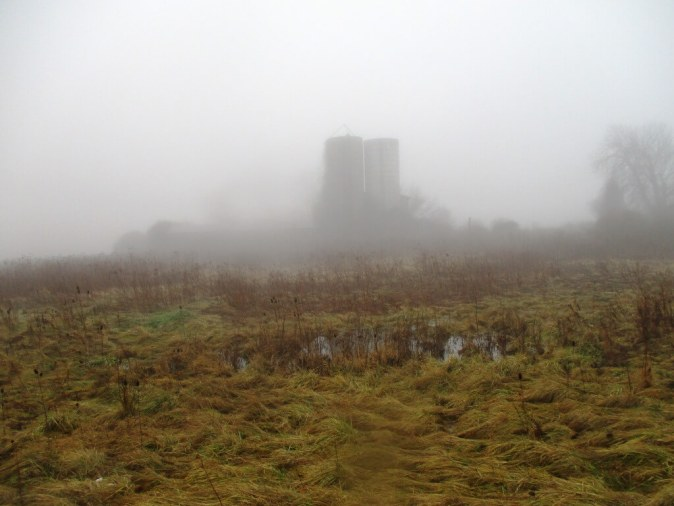 mist far