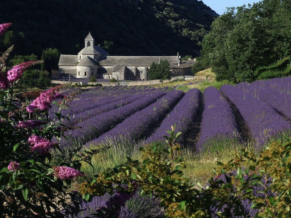 Etsy France Avis Podcast 33 Discover A New Area Of France La Provence