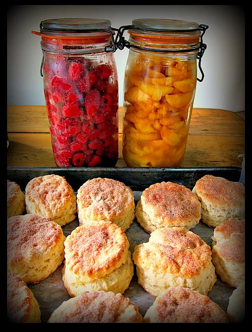 shortcakes raspberry peach